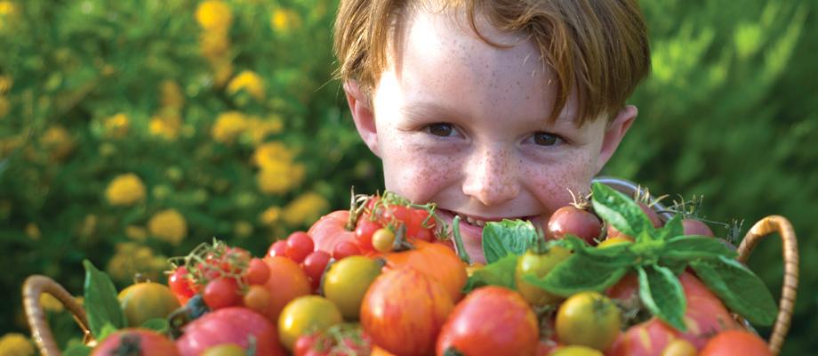slider-tomato-boy